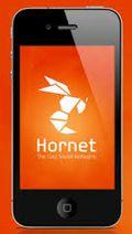Hornet screenshot