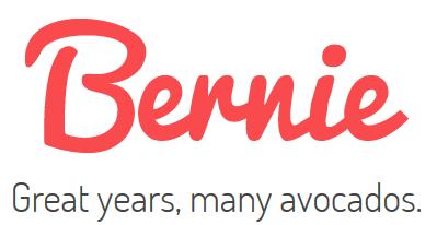 Bernie logo