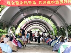China singles market