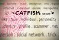 Catfish pic