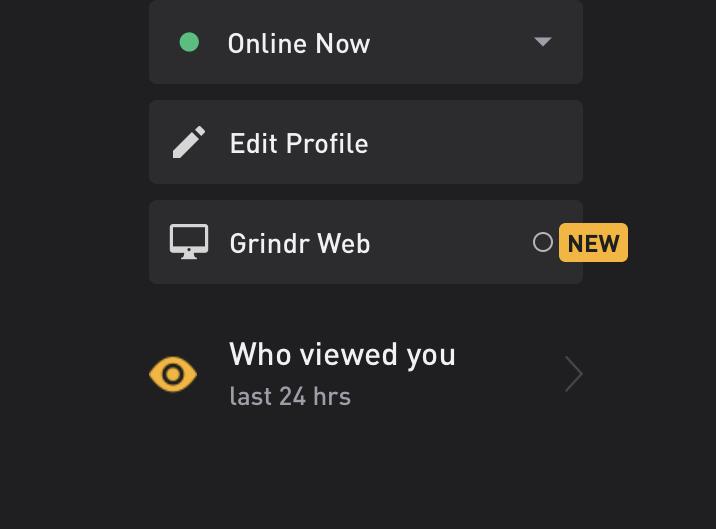 Grindr web option